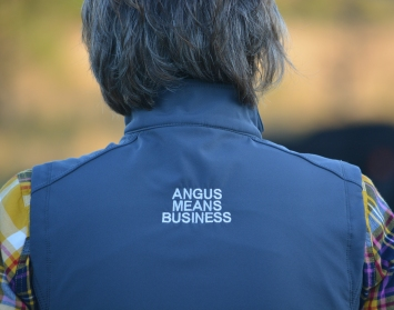 Angus Means Business